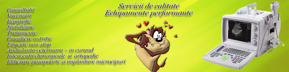 slide_servicii_1000x300
